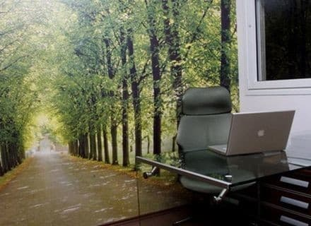 boss-office-forest-theme